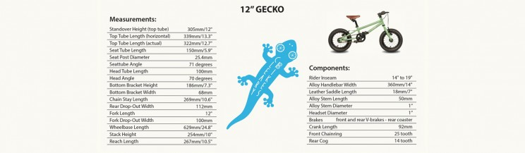 Cleary Gecko 12